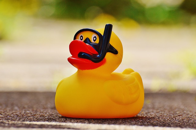 Video sewer inspection in Concord, California finds rubber duck caught in lateral